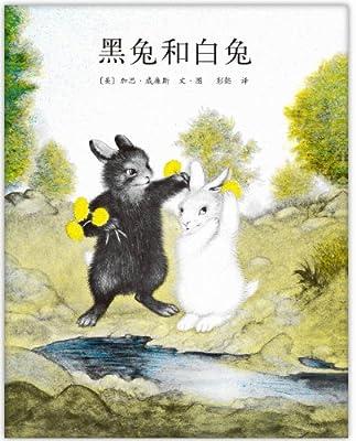 黑兔和白兔.pdf