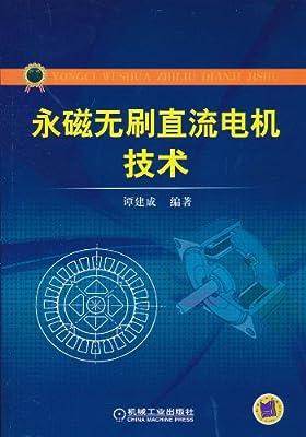 永磁无刷直流电机技术.pdf