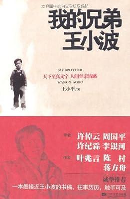 我的兄弟王小波.pdf
