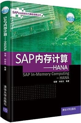 SAP内存计算:HANA.pdf