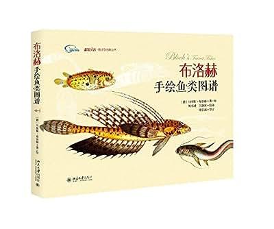 布洛赫手绘鱼类图谱.pdf