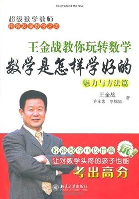 王金战教你玩转数学:数学是怎样学好的.pdf
