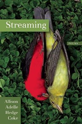 Streaming.pdf