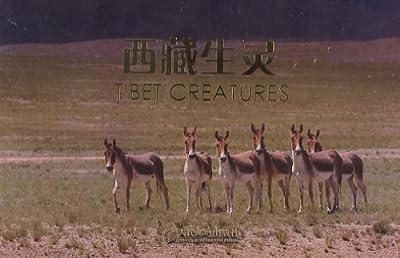 名信片图集:西藏生灵.pdf