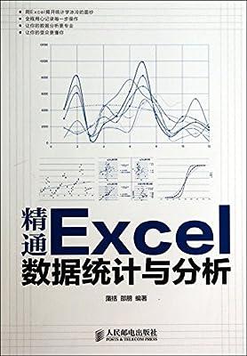 精通Excel数据统计与分析.pdf