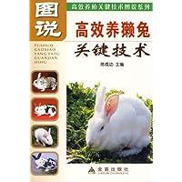 http://ec4.images-amazon.com/images/I/51QbscqJPML._AA200_.jpg