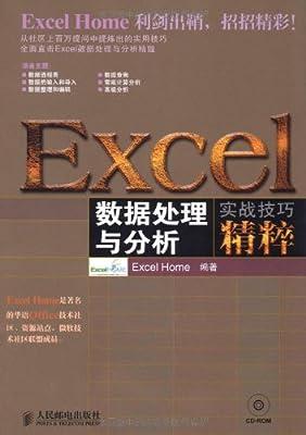 EXCEL数据处理与分析实战技巧精粹.pdf