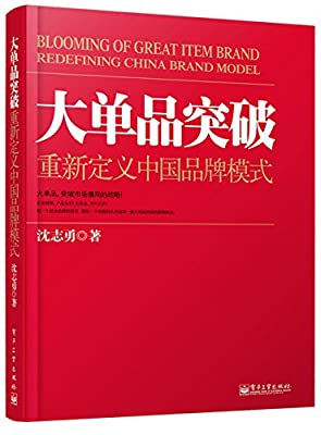 大单品突破:重新定义中国品牌模式.pdf