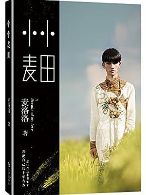 小小麦田.pdf
