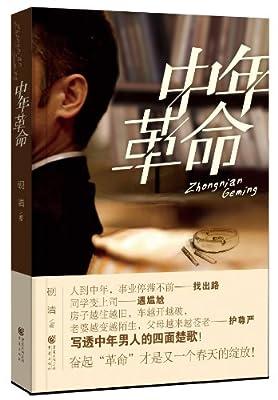中年革命.pdf