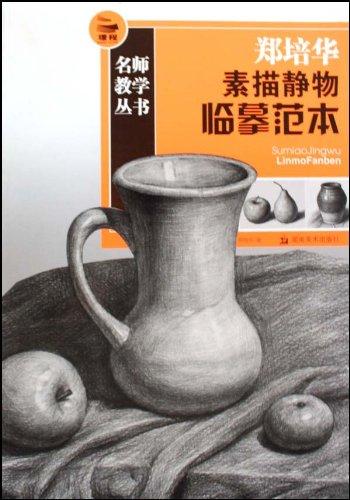 郑培华素描静物临摹范本收藏