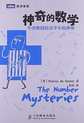 神奇的数学:牛津教授给青少年的讲座.pdf