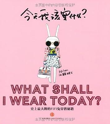 今天我该穿什么:史上最大牌的Fifi兔穿搭秘籍.pdf