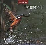 飞羽瞬间:中国野生鸟类精彩图片选(第1卷)(精)-图片