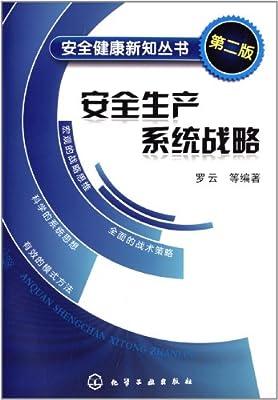 安全健康新知丛书:安全生产系统战略.pdf