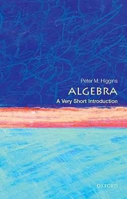 Algebra: A Very Short Introduction.pdf