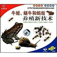 牛蛙蜗牛和蚂蚁养殖新技术