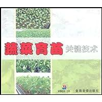 蔬菜育苗关键技术