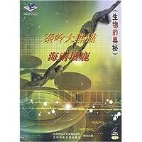 秦岭大熊猫海南坡鹿
