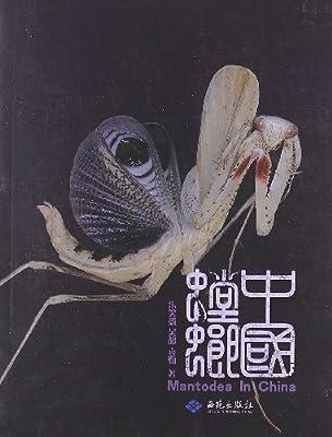 中国螳螂.pdf