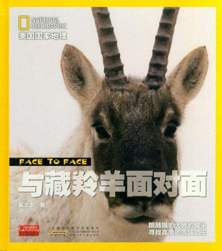 地理面对面 与藏羚羊面对面图片