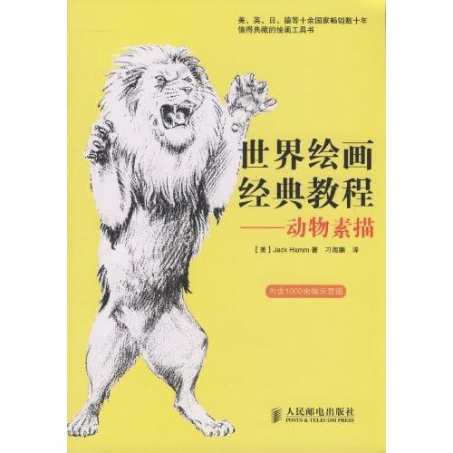 熊体征的简笔画