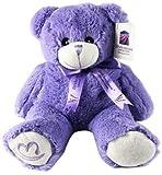 阳光童趣 (精品国货外贸)简装 浪漫薰衣草小熊 一个 可微波炉加热 节日礼物-图片