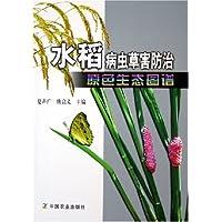 http://ec4.images-amazon.com/images/I/51ZTDq1rHjL._AA200_.jpg