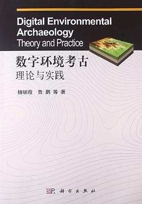数字环境考古理论与实践.pdf