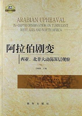阿拉伯剧变:西亚、北非大动荡深层观察.pdf