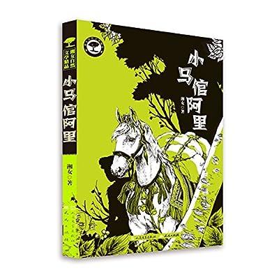 小马倌阿里.pdf