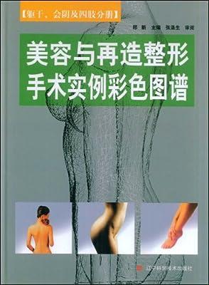 美容与再造整形手术实例彩色图谱.pdf