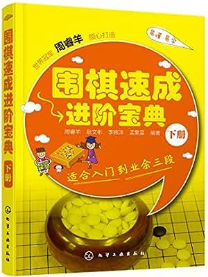 围棋速成进阶宝典.下册.pdf