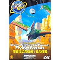 侏罗纪恐龙帝国:飞龙化石