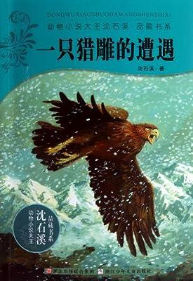 动物小说大王沈石溪品藏书系:一只猎雕的遭遇.pdf