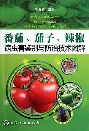 鉴别与防治技术图解 平装 -番茄 茄子 辣椒病虫害鉴别与防治技术图解