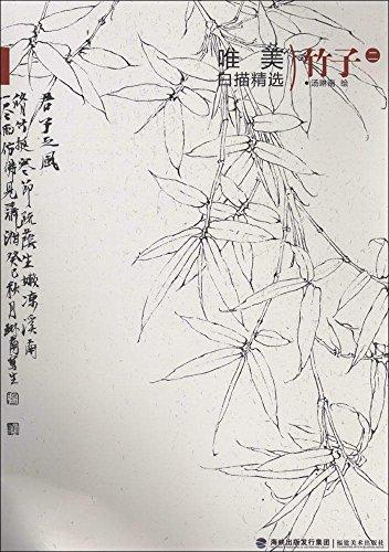 竹子马克笔手绘线稿