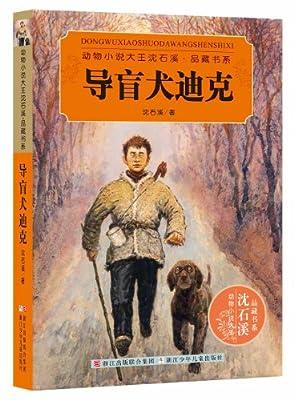 动物小说大王沈石溪·品藏书系:导盲犬迪克.pdf