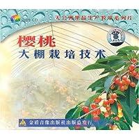 http://ec4.images-amazon.com/images/I/51eXTJUWbhL._AA200_.jpg