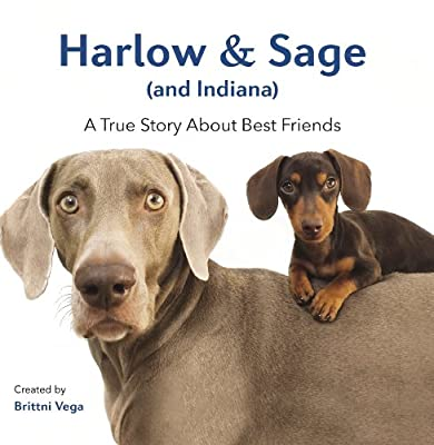 Harlow and Sage : A True Story About Best Friends.pdf