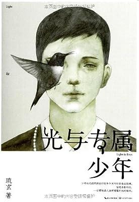 光与专属少年.pdf
