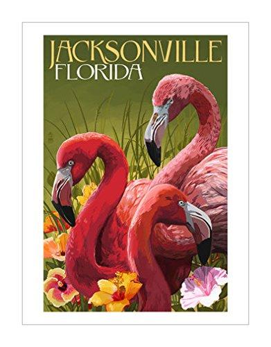 灯笼出版社|鸟类装饰画|鸟艺术|鸟类相关分类|野生动物装饰画|鸟类