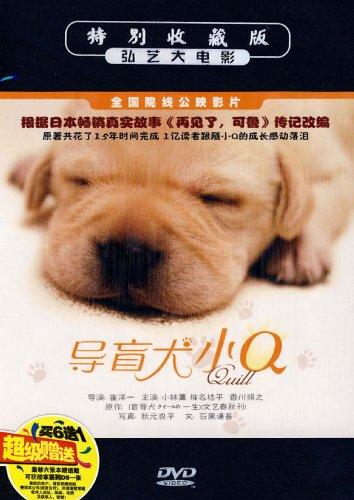 导盲犬小Q下载