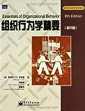 组织行为学精要(第8版)-图片