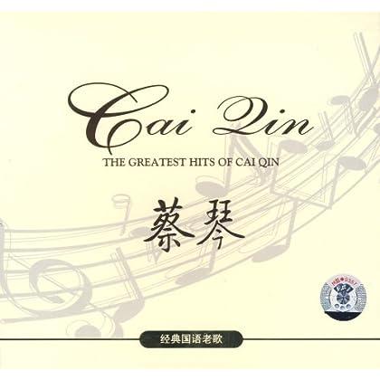 华语女歌手经典老歌 经典老歌女歌手 90年代经典老歌女歌手