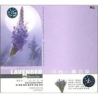 进口CD:月光.薰衣草