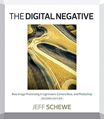 The Digital Negative: Raw Image Processing in Lightroom, Camera Raw, and Photoshop.pdf