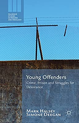 Young Offenders: Crime, Prison and Struggles for Desistance.pdf