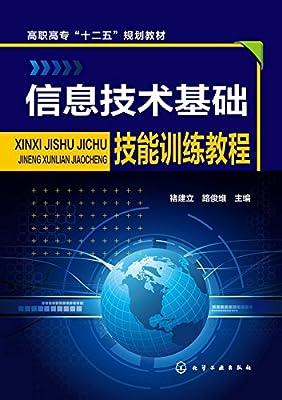 信息技术基础技能训练教程.pdf