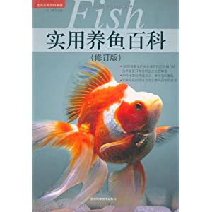 壁纸 动物 鱼 鱼类 300_300